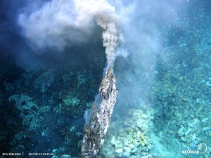 Diving robot footage: active hot smoker with mussels, tubeworms and crustaceans at the volcano Nifonea (image: Geomar Helmholtz Centre for Ocean Research Kiel)