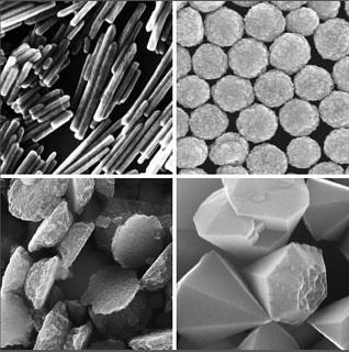 Researchers at FAU are investigating various types of nanoparticles, such as zinc oxide nanoparticles, which take the shape of rods (top left), spheres (top right), plates (bottom left) or tetrahedrons (bottom right). These extremely small particles have different effects depending on their shape. A human hair is around 800 times thicker than the particles shown here. (Image: FAU)