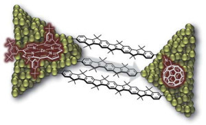 Electronic communication at the nanoscale: this diagram shows molecular wires of different lengths which act as bridges between two molecules. Zinc porphyrin is used as the electron donor (left); fullerene is used as the electron acceptor (right). (Image: FAU)