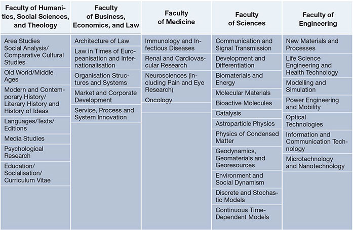 Research Focus Areas at the Faculties