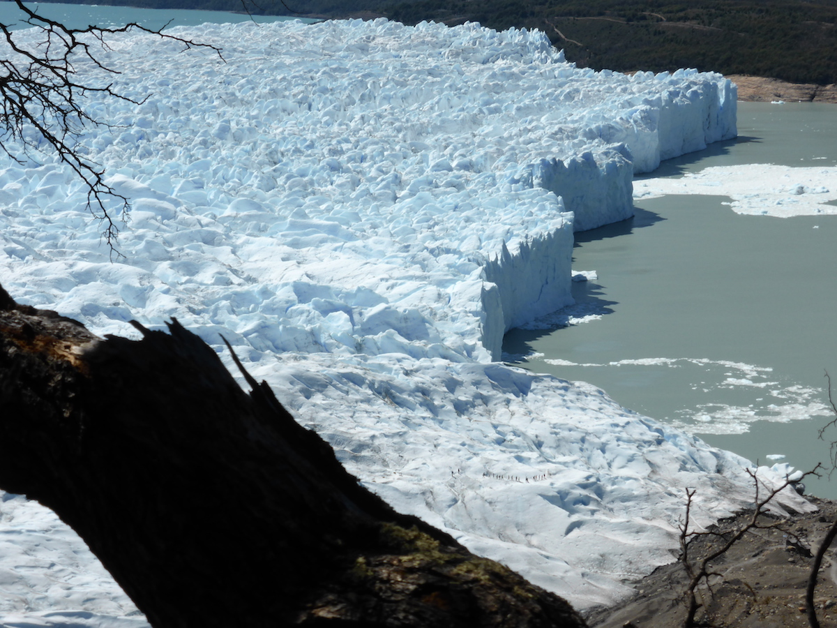 The Perito Moreno Glacier, one of the largest glaciers in the South Patagonian Ice Field in Chile, flows into Lago Argentino. When such outlet glaciers shrink, they first have to form a new stable front. (Image: FAU/Matthias Braun)
